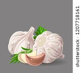garlic two whole pieces with... | Shutterstock .eps vector #1207718161