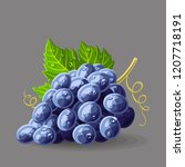 blue black grape with leaf and... | Shutterstock .eps vector #1207718191
