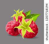 raspberries with a stem leaves... | Shutterstock .eps vector #1207718194