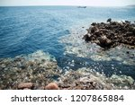 clean blue water of dahab  egypt | Shutterstock . vector #1207865884