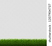 grass border isolated... | Shutterstock . vector #1207904737