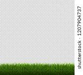 grass border isolated... | Shutterstock . vector #1207904737