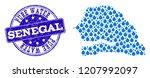 map of senegal vector mosaic... | Shutterstock .eps vector #1207992097