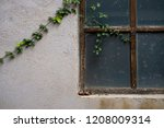 old window with ivy on the wall.... | Shutterstock . vector #1208009314