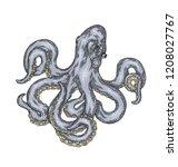 hand drawn blue octopus... | Shutterstock .eps vector #1208027767
