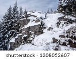 Snow Covered Rock With Trees...