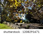lush landscape of the south of... | Shutterstock . vector #1208291671