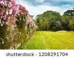 lush landscape of the south of... | Shutterstock . vector #1208291704