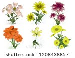 2d illustration. decorative... | Shutterstock . vector #1208438857