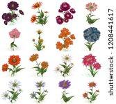 2d illustration. decorative... | Shutterstock . vector #1208441617