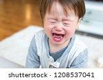 upset toddler boy screaming and ... | Shutterstock . vector #1208537041