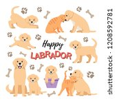 Stock vector cute labrador puppies set dog and cat friendship vector isolated purebred small retrievers 1208592781
