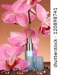 women's perfume in beautiful... | Shutterstock . vector #120898741