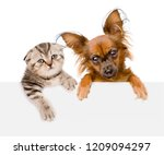 Stock photo cat and dog together over white banner isolated on white background 1209094297