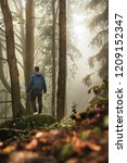 person in foggy forest | Shutterstock . vector #1209152347