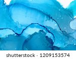 hand painted ink texture.... | Shutterstock . vector #1209153574
