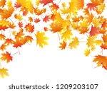 maple leaves vector background  ... | Shutterstock .eps vector #1209203107