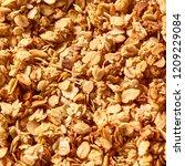 oatmeal granola textured... | Shutterstock . vector #1209229084
