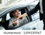 professional salesperson during ... | Shutterstock . vector #1209235567