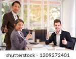 professional business people... | Shutterstock . vector #1209272401