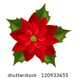 Red Poinsettia. Vector...
