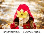 child in a red coat with autumn ... | Shutterstock . vector #1209337051