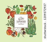 background with super food ... | Shutterstock .eps vector #1209372937