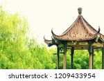 traditional colorful chinese... | Shutterstock . vector #1209433954