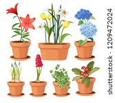 modern flower pots. colored... | Shutterstock .eps vector #1209472024