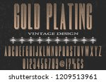font script typeface vector... | Shutterstock .eps vector #1209513961