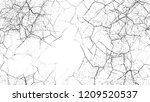 black and white stripes in...   Shutterstock .eps vector #1209520537