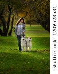 Stock photo girl plays with her husky dog in fallen autumn leaves 1209523531