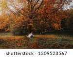 Stock photo girl plays with her husky dog in fallen autumn leaves 1209523567