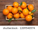 fresh orange fruits with leaves ... | Shutterstock . vector #1209540574