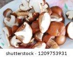 close up top view of mushroom... | Shutterstock . vector #1209753931