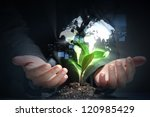 hands  the young sprout and our ...   Shutterstock . vector #120985429