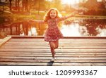 little cheerful gilr on the... | Shutterstock . vector #1209993367
