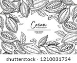 cocoa frame. vector superfood... | Shutterstock .eps vector #1210031734