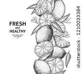 lemon border drawing. citrus... | Shutterstock . vector #1210033384