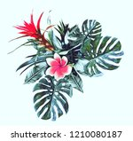 tropical plant. watercolor... | Shutterstock . vector #1210080187