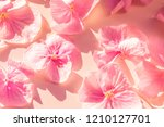 large pink petals on a rough... | Shutterstock . vector #1210127701