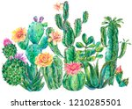 exotic natural vintage... | Shutterstock . vector #1210285501
