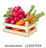 fresh vegetable  radish ... | Shutterstock . vector #121037554
