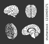 brain icon set. simple set of... | Shutterstock .eps vector #1210405171