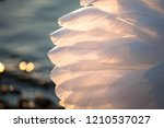 white wings of the beautiful... | Shutterstock . vector #1210537027