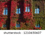 building wall with windows in... | Shutterstock . vector #1210650607