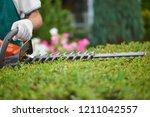 professional male gardener ...   Shutterstock . vector #1211042557