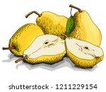 vector illustration sketch of... | Shutterstock .eps vector #1211229154