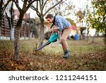home gardening details  young... | Shutterstock . vector #1211244151