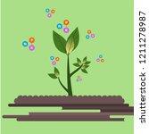 Fertilizer For Plants Good To...